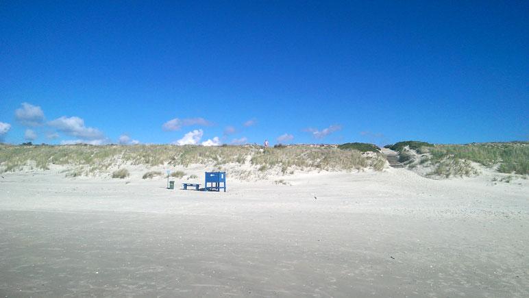 Ostseestrand-Duenen
